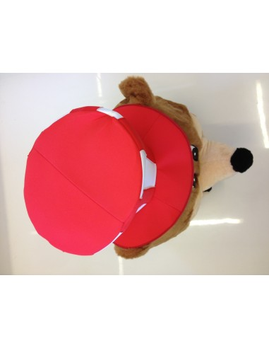 Bear mascot costume 21 (Running costume Promotion)